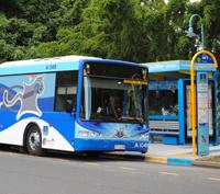 Cityglider bus services brisbane city council cityglider bus services sciox Gallery