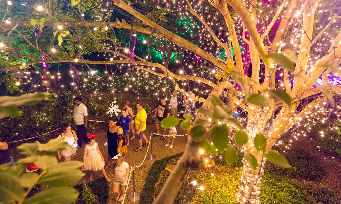 The Enchanted Garden Brisbane City Council