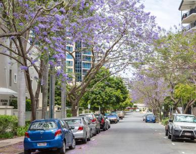 Brisbane City Council home page