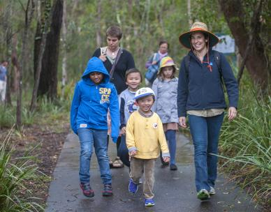 Bush Kindy - Guided walk in Karawatha