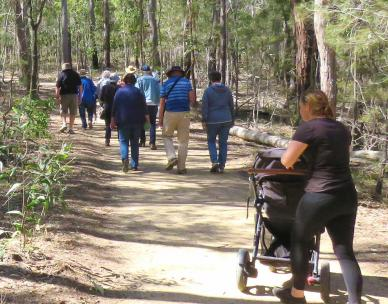 Bush Kindy guided walk in Karawatha