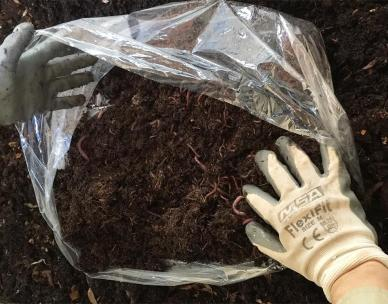 Sustainable living - Compost and worm farm workshop