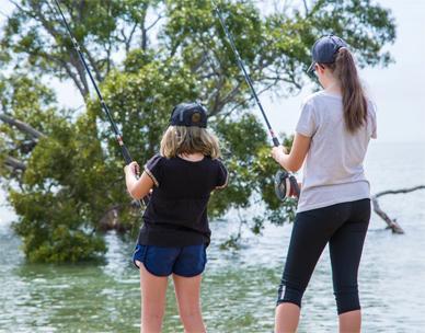 Brisbane's creeks and rivers | Brisbane City Council