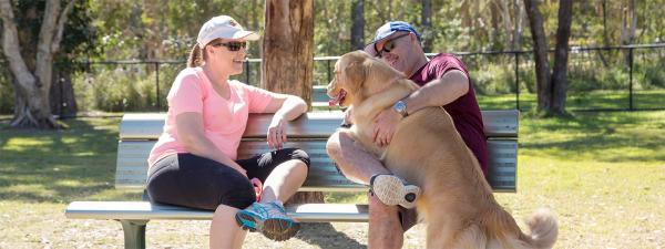 Golden retriever with two adults sitting on a bench seat at Calamvale District Park, Calamvale.